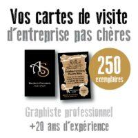 Carte de visite pas chere 250 exemplaires par un graphiste à Toulouse en Haute Garonne