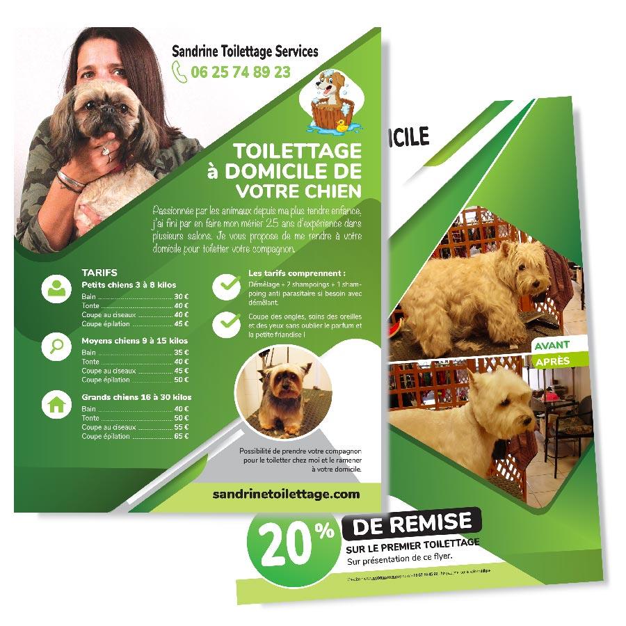 Création flyer à Toulouse de toilettage canin